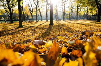 È stato il novembre più caldo di sempre